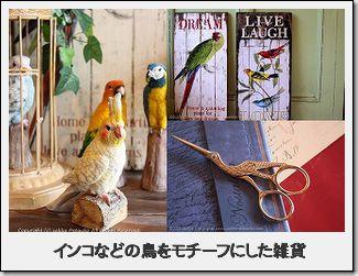 鳥、インコの雑貨